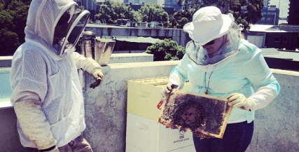 The cast of Constellations (2013) visit an apiary in preparation for the play.