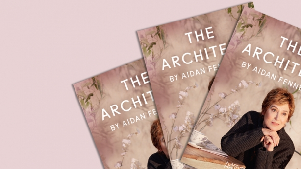 The Architect programme